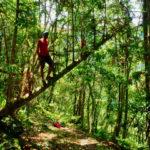 Guille im Dschungel Walami