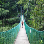 Hängebrücke Walami Trail