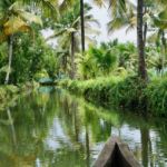 Backwaters_Kerala_Paradies