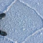 Meine Füße im Salz